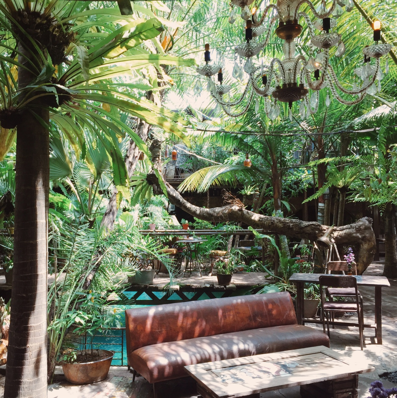 The magical garden at La Favela