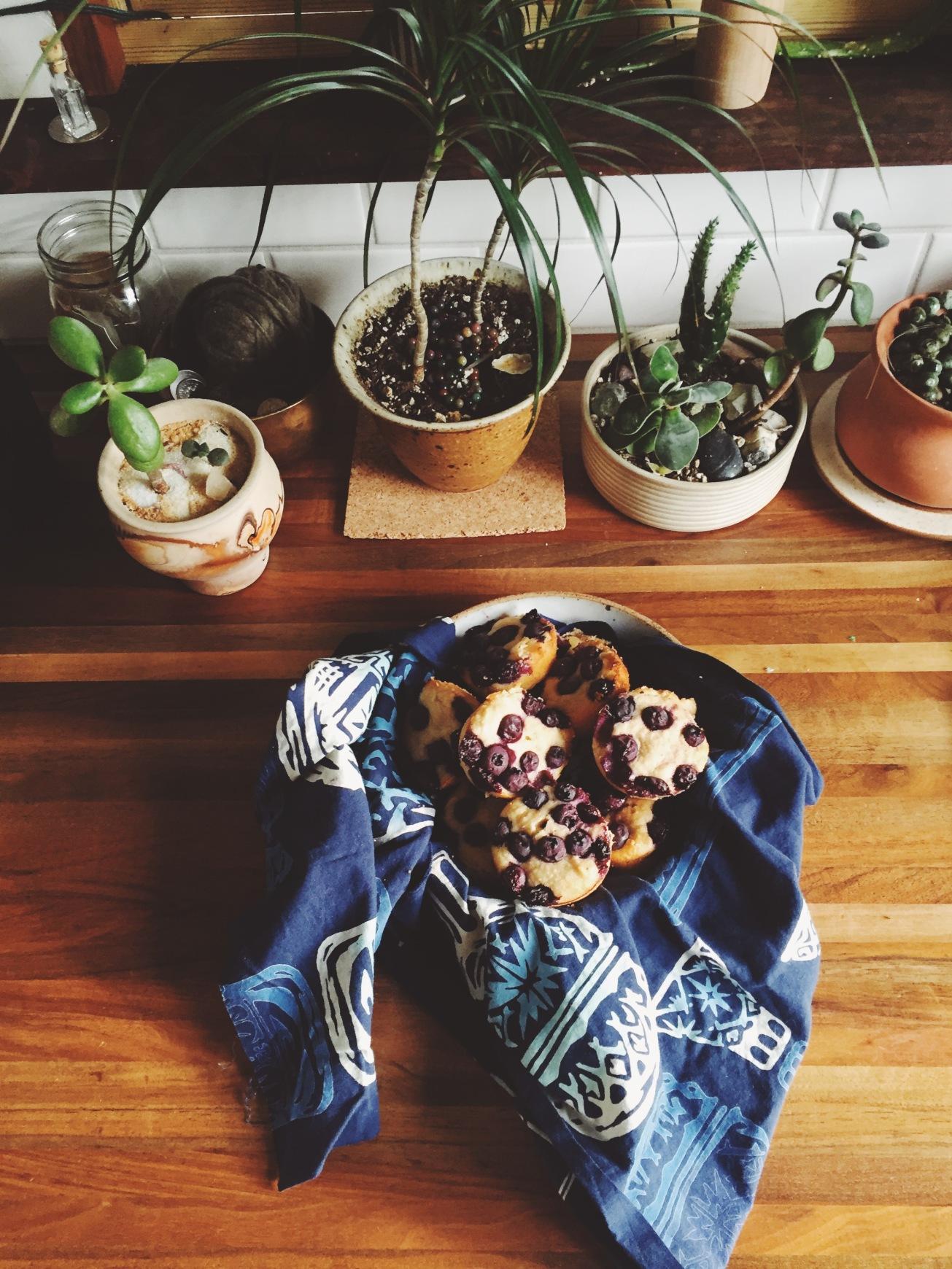 blueberry muffins - Magic Dream Life